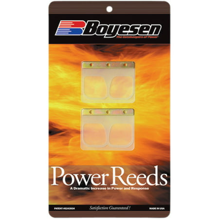 Power Reeds for Yamaha YZ125 2004 (Yz125 Reed)