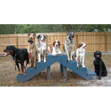 - Dog Training Canine Alpha CD Dog Whisperer 20 Books Breeding Puppy Pit Bull