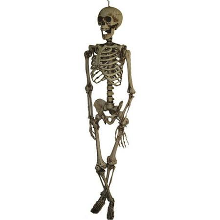 5 hanging halloween skeleton - Halloween Skeleton