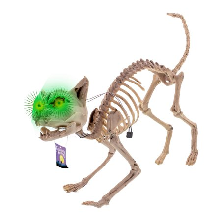 Life Size Skeleton Prop (Life Size Skeleton Meowing Kitty Cat with Light-Up Green Eyes Prop Decoration - Scary 10