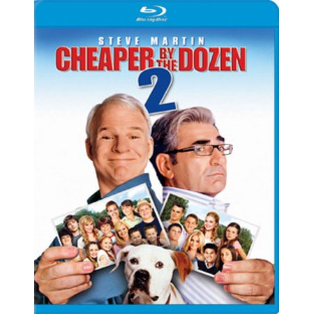 Cheaper by the Dozen 2 (Blu-ray)
