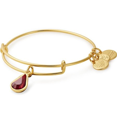 Alex and Ani January Birth Gold One Size Bracelet (Clothes To Wear In Hospital After Birth)