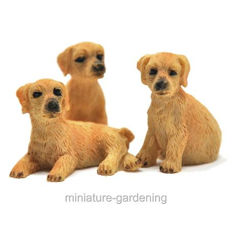Miniature Little Hound Dogs, 3 Piece Set for Miniature Garden, Fairy Garden