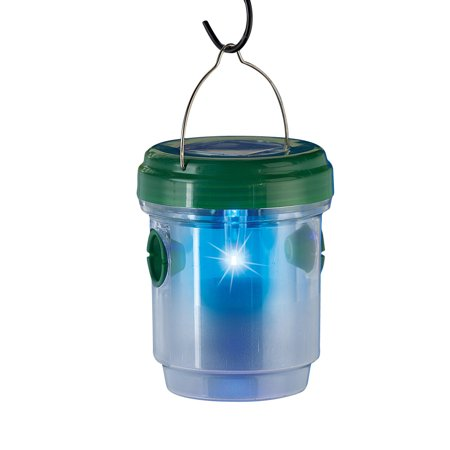 Solar Wasp Trap Catcher - Great for catching Wasps, Bees, Flies and Yellow Jackets