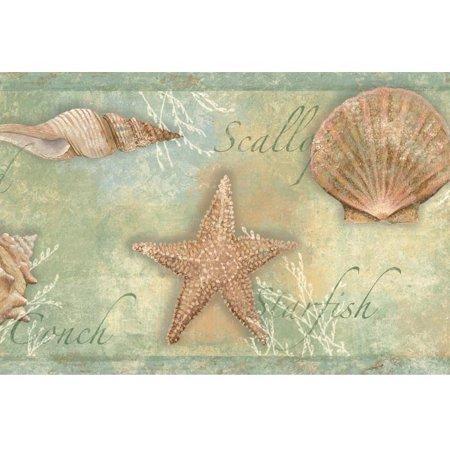 878533 Sea Shells Wallpaper Border Ct46052b