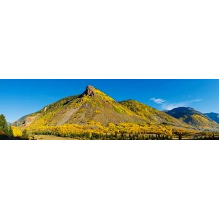 Aspen Trees On Mountain Anvil Mountain Million Dollar Highway Silverton Colorado Usa Poster Print