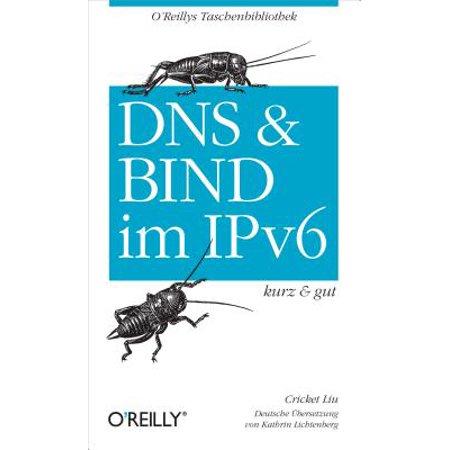 DNS und Bind im IPv6 kurz & gut - eBook