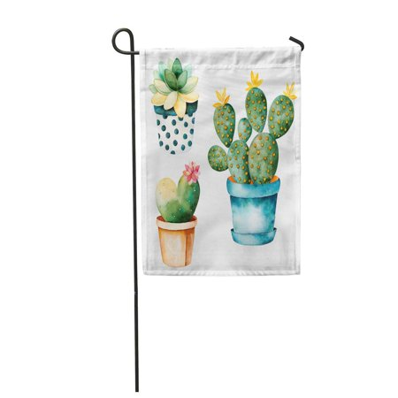 LADDKE Watercolor Handpainted Cactus Plant and Succulent in Pot Clipart Individual Garden Flag Decorative Flag House Banner 12x18 (Checkered Flag Clipart)