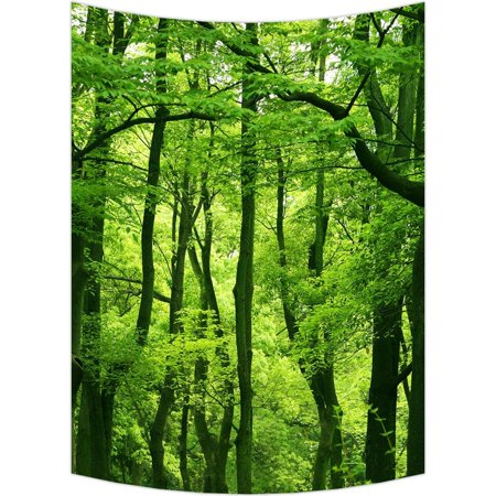 "GCKG Dream Amazing Beautiful Fresh Green Forest Wall Art Tapestries Home Decor Wall Hanging Tapestry Size 51""x60"""