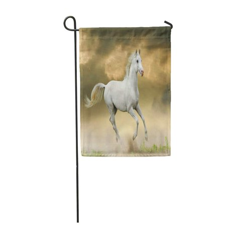 JSDART Gray Run White Horse in Sunset Orange Ground Nature Garden Flag Decorative Flag House Banner 28x40 inch - image 1 de 1