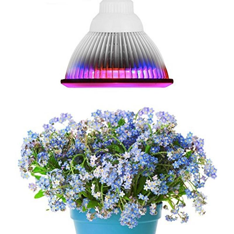 Superdream E27 12W Led Grow Light TT-GL20 Red Blue LED Li...
