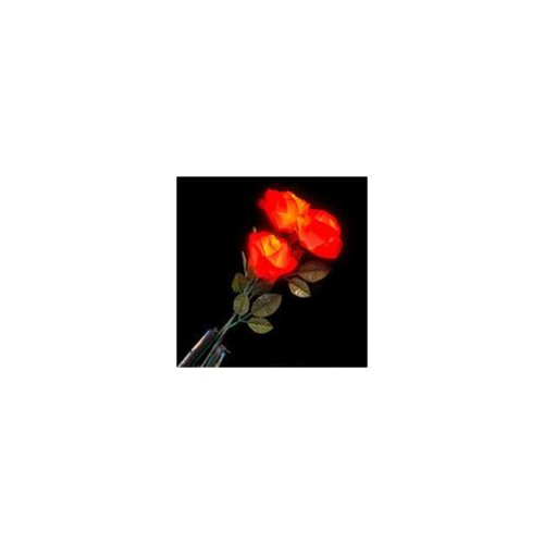 Ddi Happy Valentine's Day Light Up Red Roses