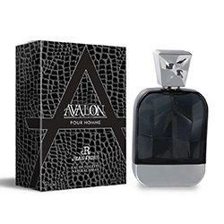 AVALON Eau De Toilette Men's Perfume 100ML](Perfume Halloween 100ml)