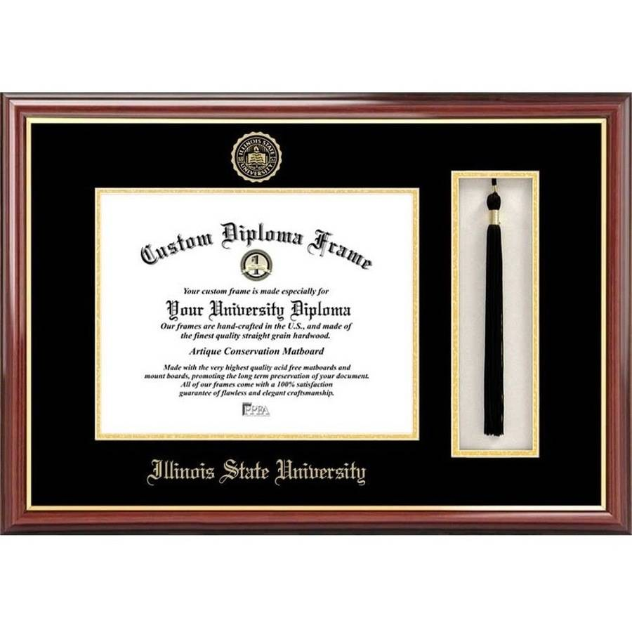 "Illinois State 8.5"" x 11"" Tassel Box and Diploma Frame"