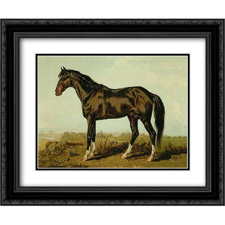 Dongola Horse, 1900 2x Matted 24x20 Black Ornate Framed Art Print by Sidney, Samuel