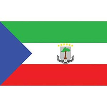 Equatorial Guinea Flag On A Stick 12