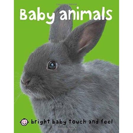 Baby Animals (Board Book) - Halloween Books For Toddlers Online