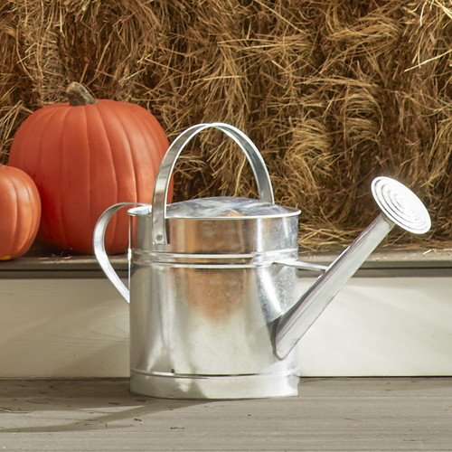 Arcadia Garden Products 2 Gallon Watering Can by Arcadia Garden Products
