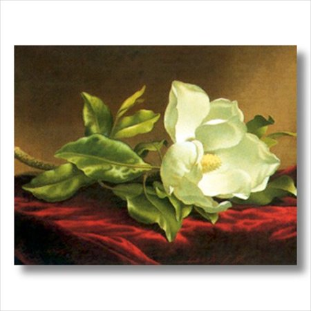 White Magnolia Floral Flower Wall Picture Art Print ()