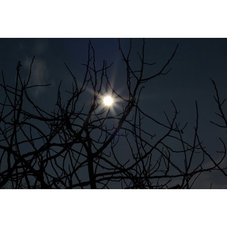 Canvas Print Horror Scary Night Fear Moon Dark Halloween Stretched Canvas 10 x 14](Last Day Halloween Horror Nights)