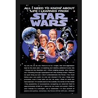 FRAMED All I Need to Know About Live I Learned from Star Wars 18x12 Movie Art Print Poster Harrison Ford Mark Hamill Carrie Fisher Billy Dee Williams George Lucas