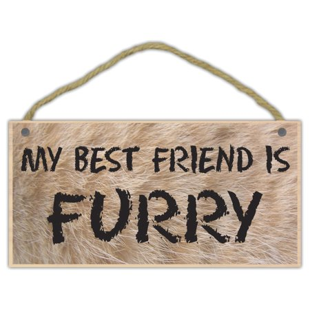 Wooden Decorative Pet Sign: My Best Friend Is Furry | Dogs, Cats,
