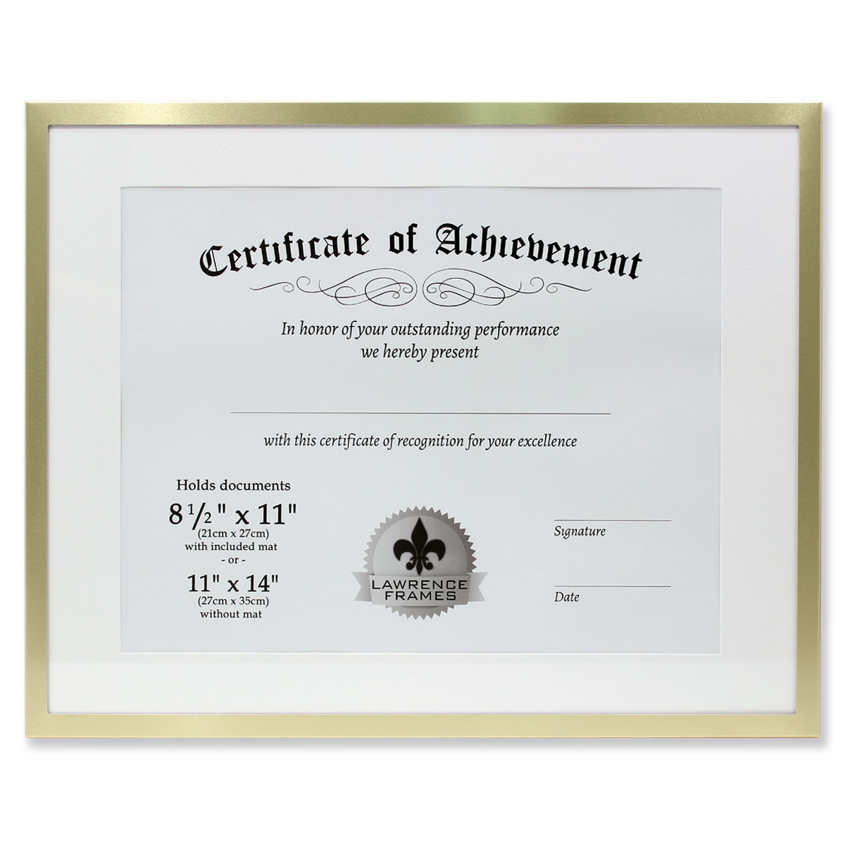 11x14 Dual Use Gold Aluminum Document Frame