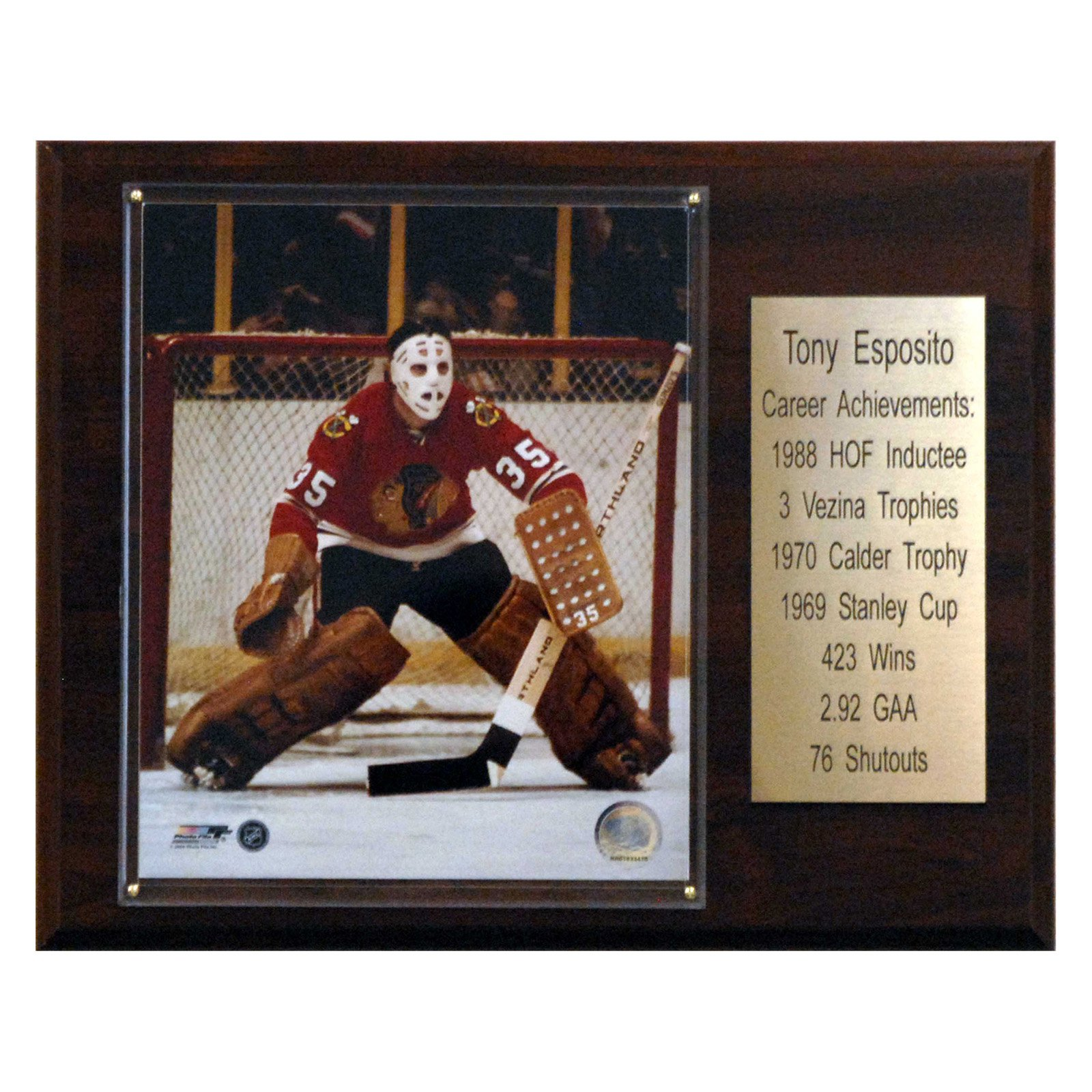 C&I Collectables NHL 12x15 Tony Esposito Chicago Blackhawks Career Stat Plaque