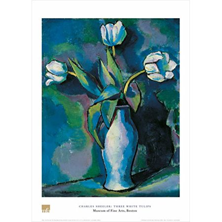 - Three White Tulips by Charles Sheeler 28x20 Art Print Poster Floral Still Life Famous Painting