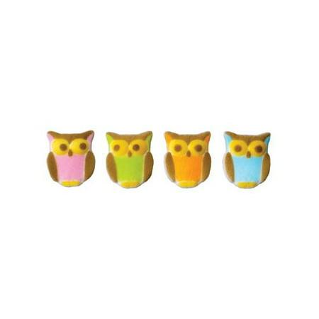 Owl Cake Decorations - Owl Birthday Cake