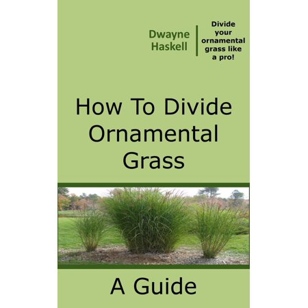 How To Divide Ornamental Grass - eBook (Tall Ornamental Grasses For Privacy Zone 6)
