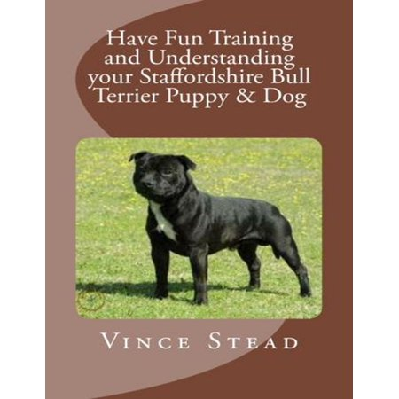 Have Fun Training and Understanding Your Staffordshire Bull Terrier Puppy & Dog -