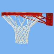 Official Size Fixed Double Rim Goal