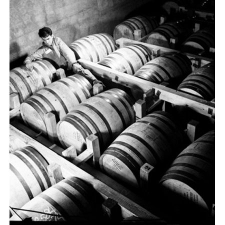 High angle view of a male worker writing on barrels in a distillery Louisville Kentucky USA Canvas Art - (24 x 36)