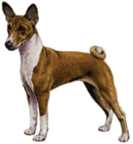 Basenji Dog Counted Cross Stitch Pattern