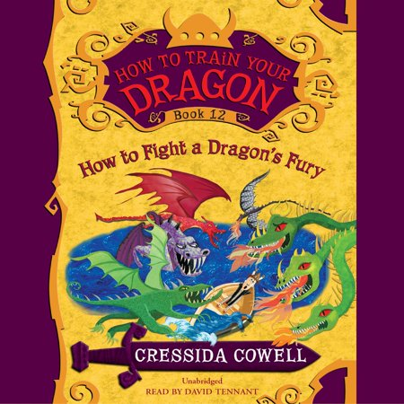 How to Train Your Dragon: How to Fight a Dragon's Fury - Audiobook](Fairy Train)