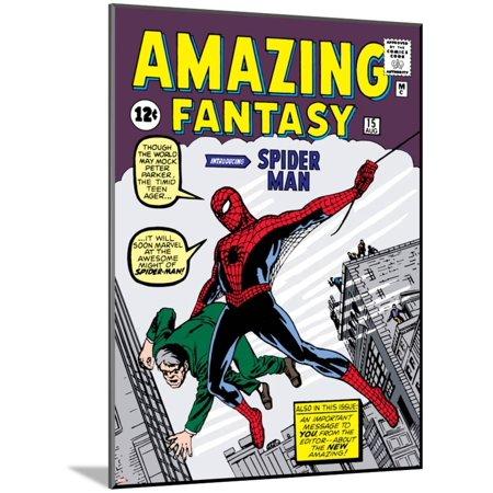 Marvel Comics Retro: Amazing Fantasy Comic Book Cover No.15, Intro... Art Print