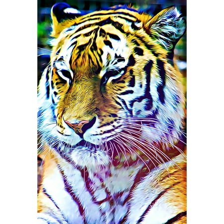 LAMINATED POSTER Graphics Animal Striped Tiger Is Watching Digital Poster Print 24 x 36