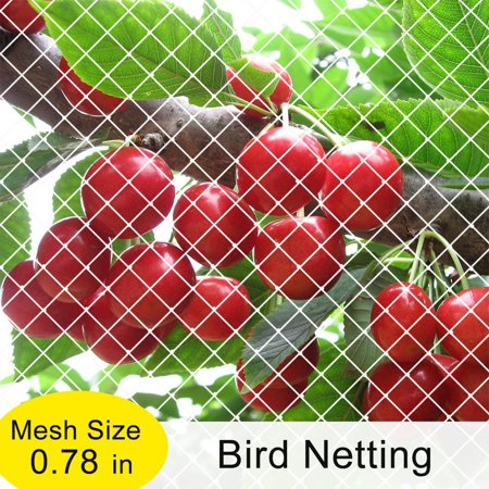 Agfabric Garden Bird Netting Anti Bird Protection Net Fruit Vegetables Flower Garden Pond Netting, 7x20ft, (Plastic Bird Netting)