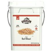 Augason Farms Hard Red Wheat Emergency Food Storage 24 Pound Pail