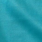 Microfiber Glass Cloths (Set of 2)