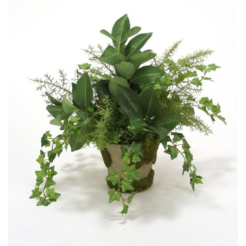 Distinctive Designs Mini Ivy, Fern and Orange Foliage Desk Top Plant in Pot