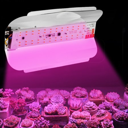 LED Grow Light, Full Spectrum 100W Flower Flood Light, Plant Growing Lamp for Hydroponics Indoor Plants , 220V Waterproof IP65 5730 SMD - image 7 of 7