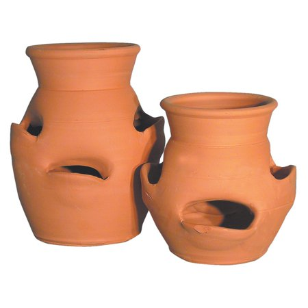 Craven Pottery Large Pocket Strawberry Herb Jar Planter ()