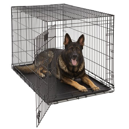 Large Midwest Life Stages - Midwest Life Stages Single Door Dog Crate
