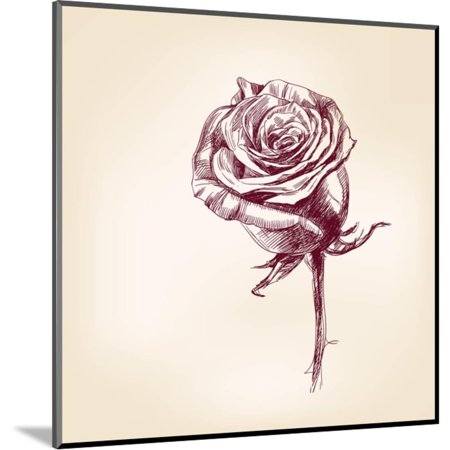 Hand Drawn Roses Wood Mounted Print Wall Art By Vladischern
