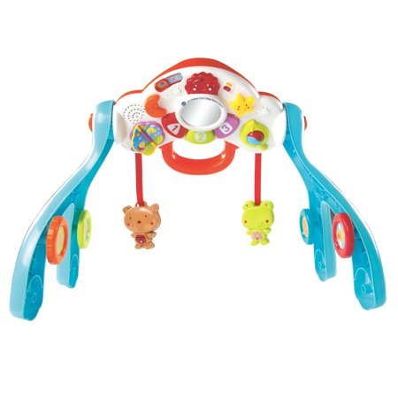 VTech VTech Baby Line Lil' Critters Discover and Learn Gym ...