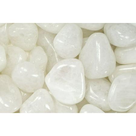 Fantasia Crystal Vault: 1 lb High Grade Milky Quartz Tumbled Stones - Medium - 1