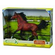 CollectA Horses Arabian Stallion Bright Bay Deluxe 1:12 scale in window box #89460