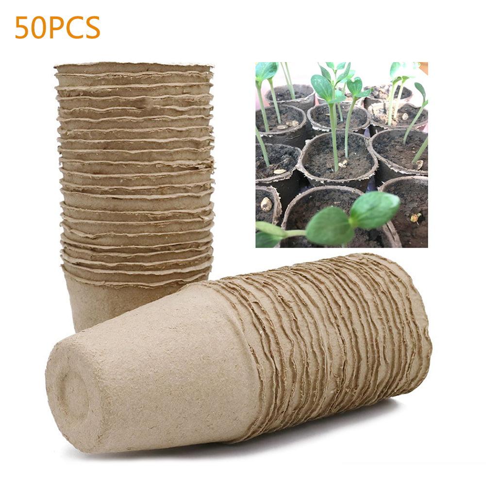 Biodegradable Pulp Containers Succulent Favor pots 10 set Peat Pots Organic Pots paper pulp round